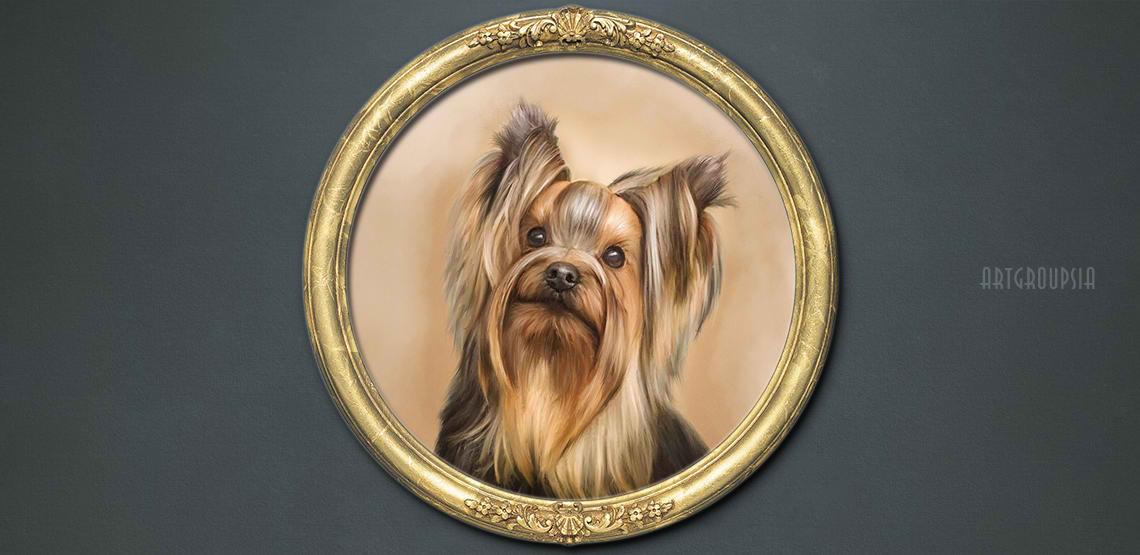 after portrait of a pet